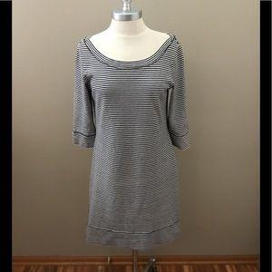 Banana Republic Blue/White Striped Dress